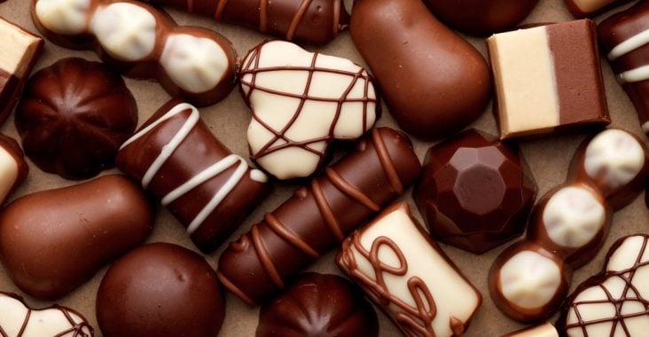 Fazer chocolate para vender dá dinheiro